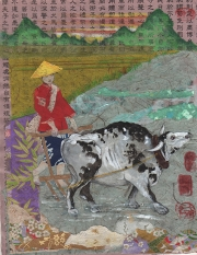 Asian Ox