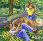 Dog Found in Woods